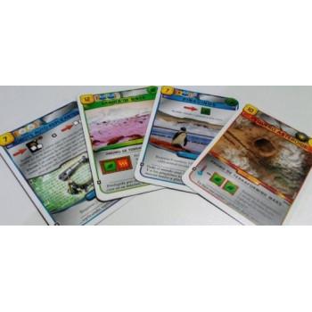 CARTAS PROMO TERRAFORMING MARS: PEQUEÑO ASTEROIDE / PINGUINOS / CARTAS SANDIA DE NIEVE / ANDROIDES AUTO-REPLICANTES