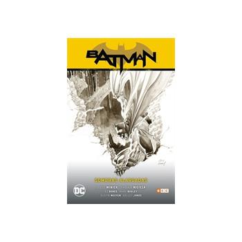 BATMAN VOL. 9: SOMBRAS...
