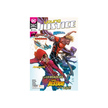 YOUNG JUSTICE 14