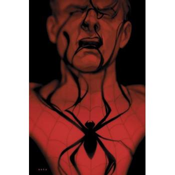 SPIDERMAN: LA SOMBRA DE LA...