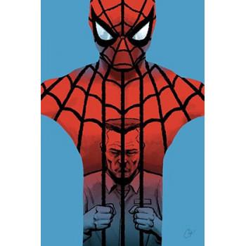 SPIDERMAN: TODA UNA VIDA -...