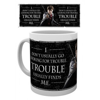TAZA FRASE HARRY POTTER