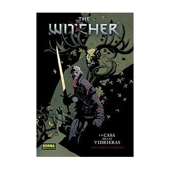 THE WITCHER 01 LA CASA DE LAS VIDRIERAS